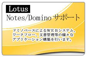 Lotus Notes/Dominoサポート